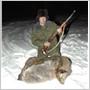 03 января 2010 Была проведена охота на пятнистого оленя с подхода.
